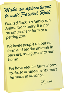 A note about Painted Rock Animal Farm & Sanctuary